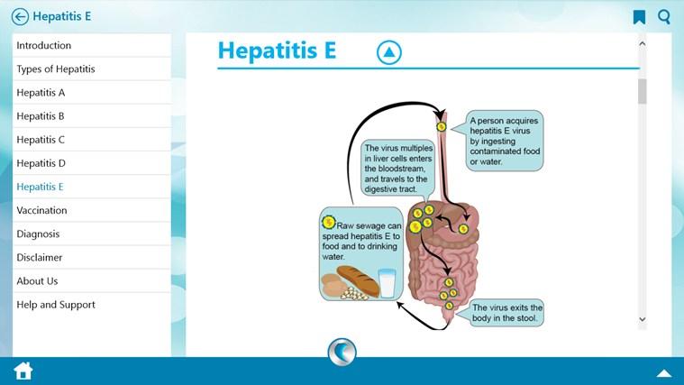 hepatitis b erreger
